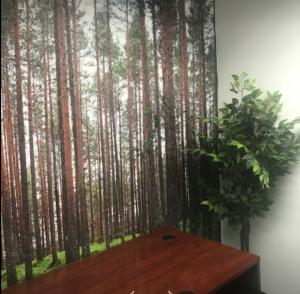 MagHub Tree Room